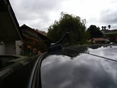 Stubby Antenna #2